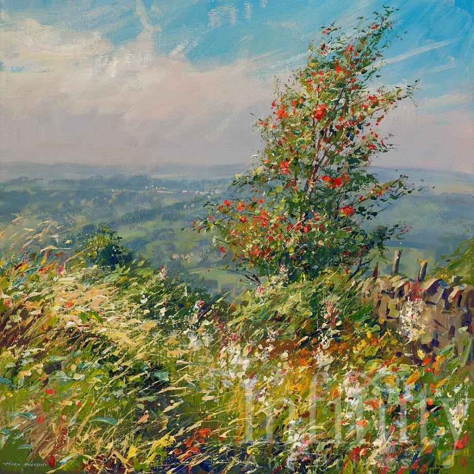 Rowan and Willowherb, Curbar Gap