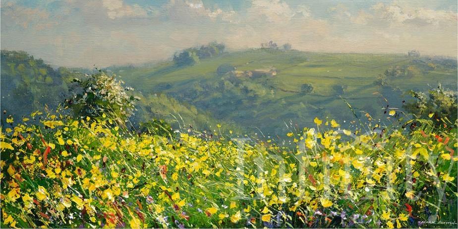 May Flowers, Bonsall Moor