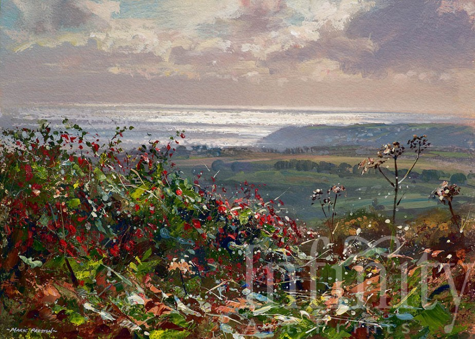 Silver Sea and Fuchsia, Penwith