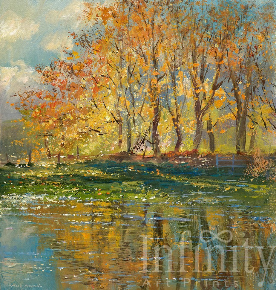 Sunlit Beech Trees, Beresford Dale